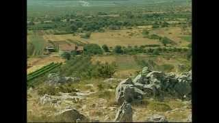 Benkovački ratni dnevnik