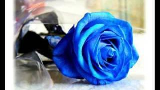 Plava Trava Zaborava - Jablan